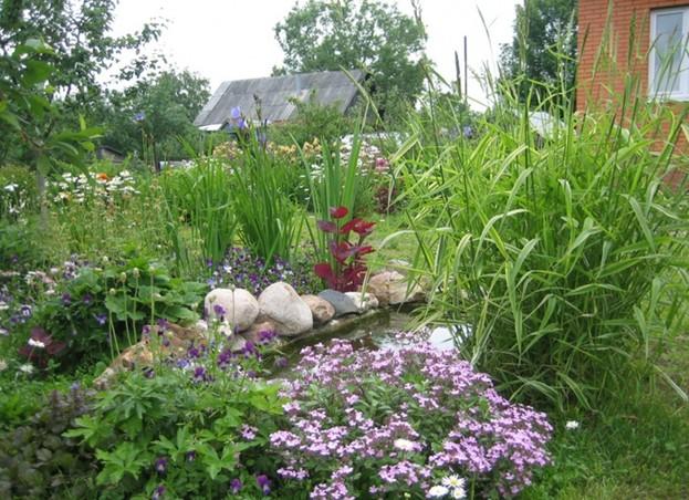 дизайн сада  садовый водоем